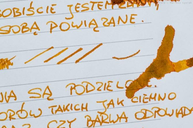 pelikan_edelstein_amber_sm-20