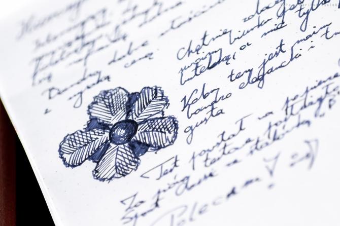 hieronymus_violet01_sm-8