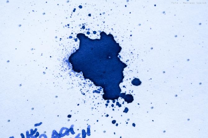 omas_blue_sm-16