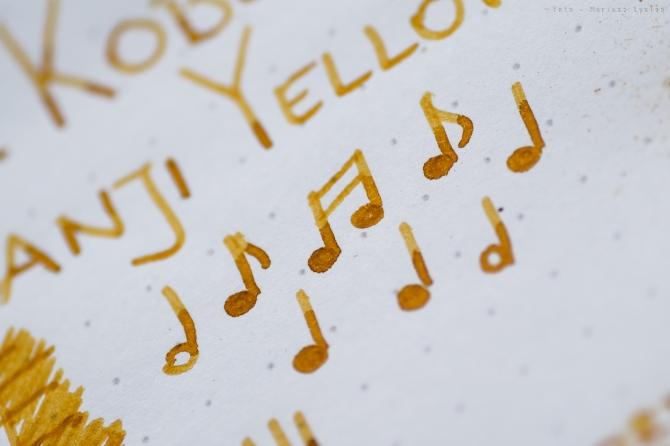 sailor_kobe_taisanji_yellow_sm-18