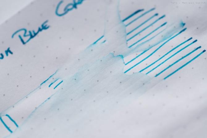 bookbinders_blue_coral_sm-17