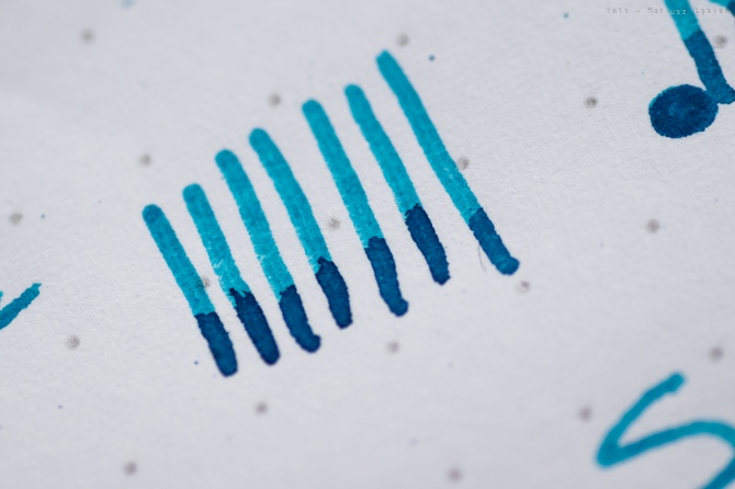 bookbinders_blue_coral_sm-4