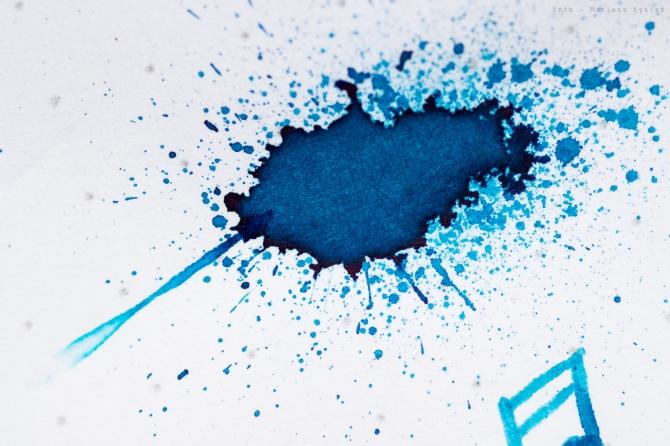 bookbinders_blue_coral_sm-5