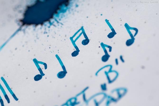 bookbinders_blue_coral_sm-7
