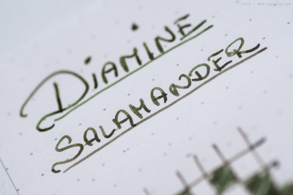 diamine_salamander_prsm-2