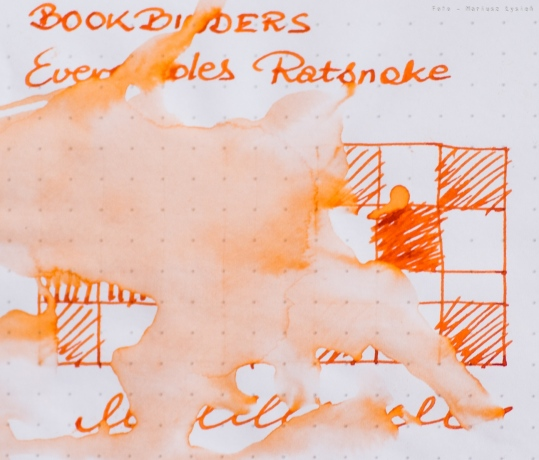 bookbinders_everglades_ratsnake_sm-13