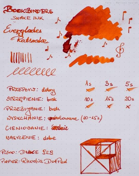 bookbinders_everglades_ratsnake_sm-1