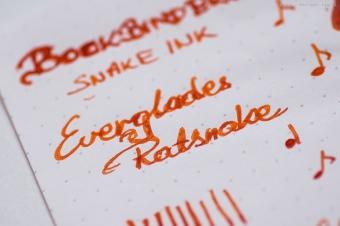bookbinders_everglades_ratsnake_sm-2