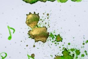 diamine__shimmering_goldenoasis_prsm-8