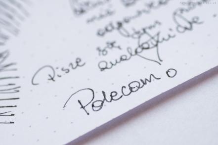 platinum_plasir_prsm-12