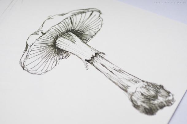 rohrer_klinger_sketch_ink_lilly_sm-18