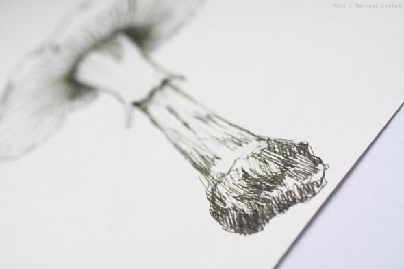 rohrer_klinger_sketch_ink_lilly_sm-22