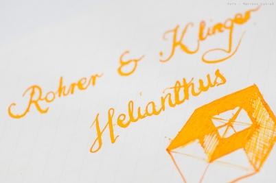 rohrerklinger_helianthus_sm-22
