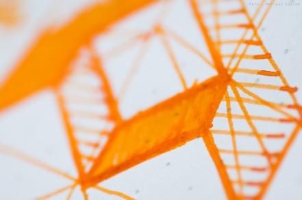 montblanc_manganese_orange_sm-13