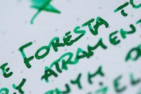 leonardo_verde_foresta_green_sm-12