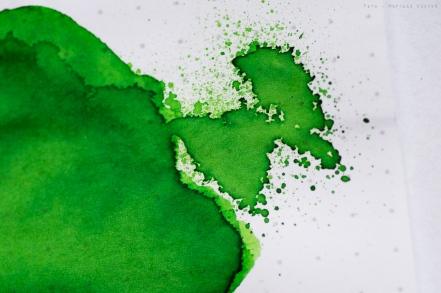 robert_oster_light_green_sm-28