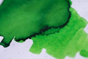 robert_oster_light_green_sm-6