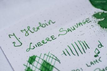 herbin_lierre_sauvage_test_sm-6